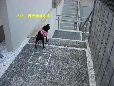 20071001_朝散歩1