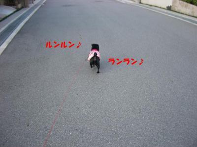 20071001_朝散歩4