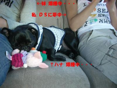 20071008_鳥取2