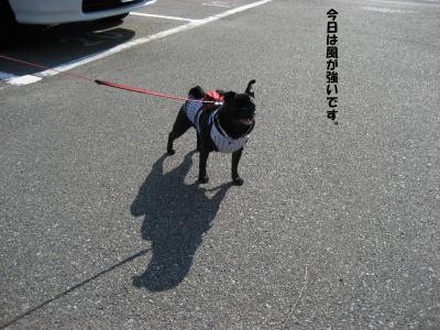 20071010_鳥取2