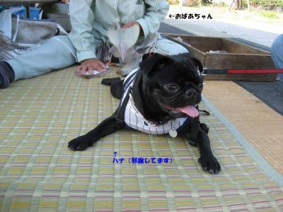 20071010_鳥取3