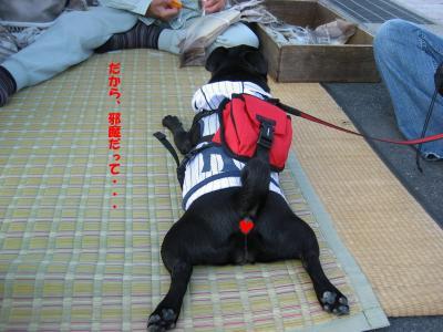 20071010_鳥取4