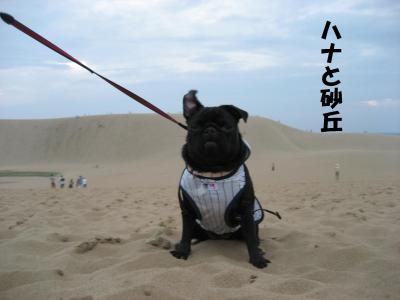 20071012_鳥取5