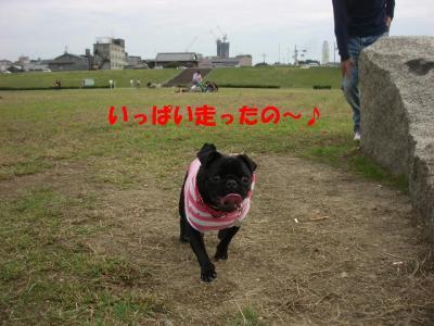 20071015_河川敷4