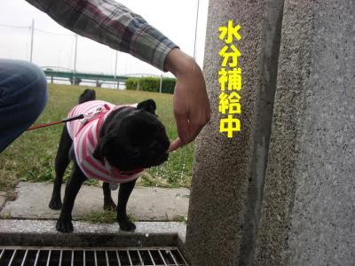 20071015_河川敷5
