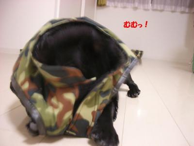 20071030_撮影6