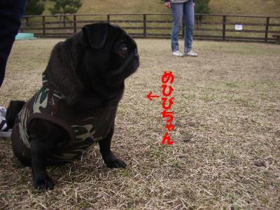 20071113_三重6