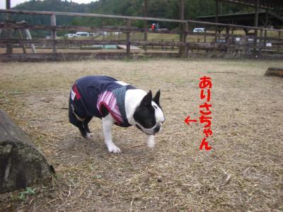 20071113_三重7