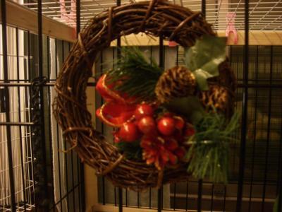 20071210_クリスマス5