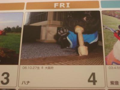 20071219_カレンダー3
