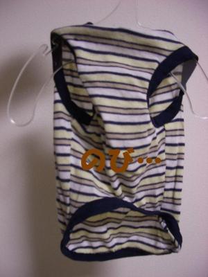 20080229_洗濯4