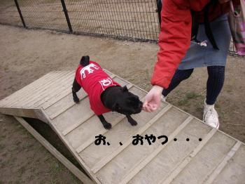 20080303_高雄3