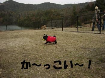20080303_高雄5