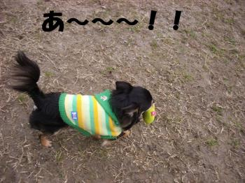 20080303_高雄7
