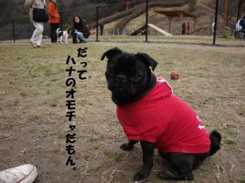 20080303_高雄D