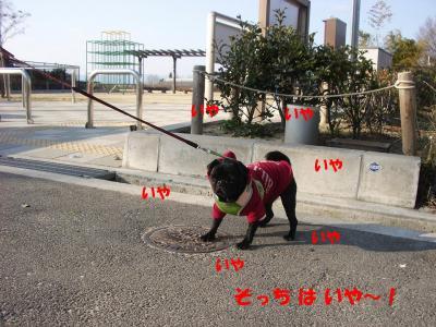 20080310_妄想2