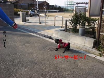 20080310_妄想3