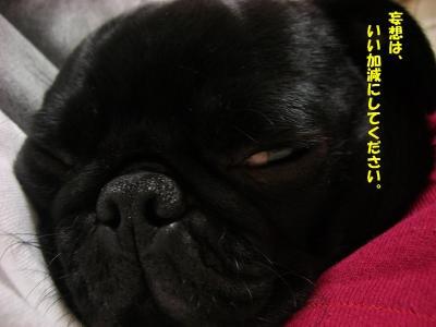 20080310_妄想5