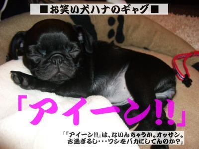 20080310_妄想6