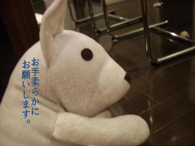 20070906_相撲2