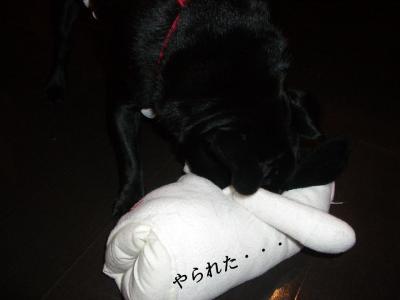 20070906_相撲4