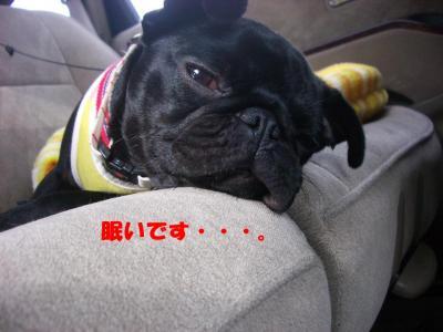 20070909_実家5