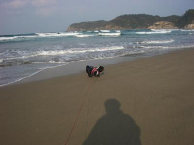 20071129_海D