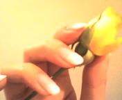 Anella's-nailアネラの爪