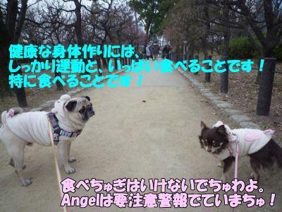 image10_20110208015130.jpg