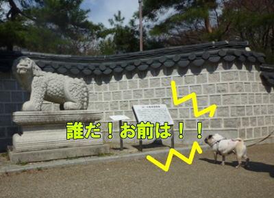 image1_20110329225925.jpg