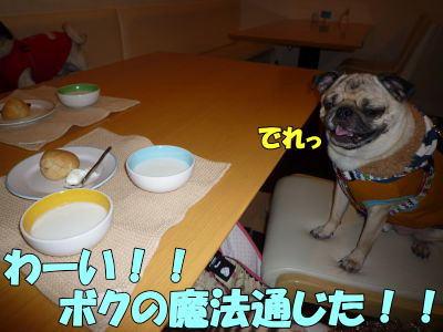 image3_20110220203936.jpg