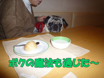 image4_20110220205154.jpg