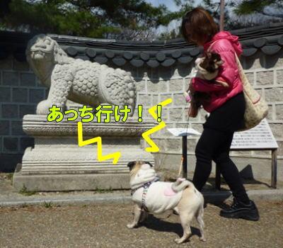image4_20110329225924.jpg
