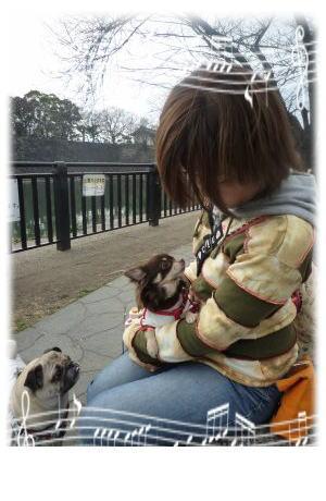 image9_20110319021846.jpg