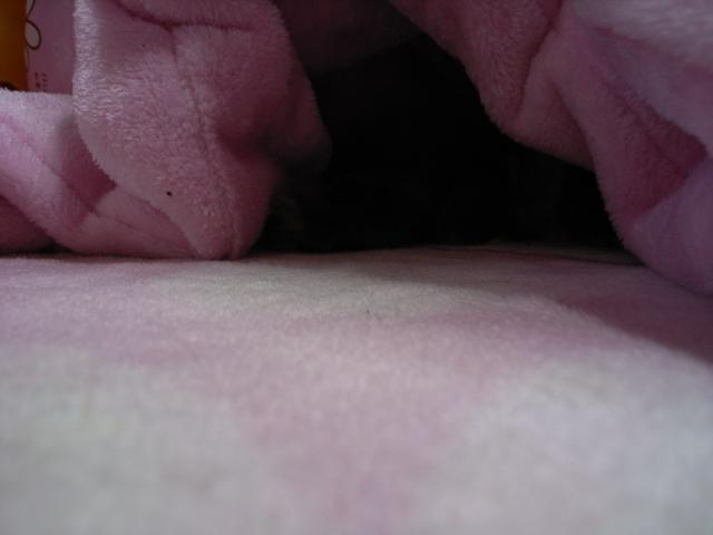 みちゅこの穴3