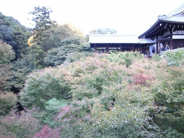 東福寺の紅葉4