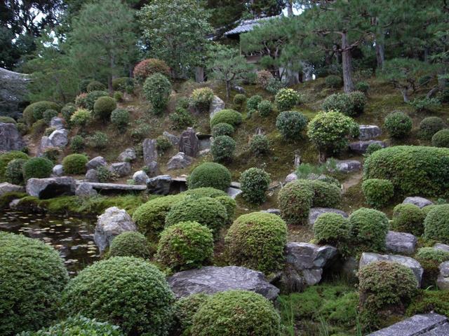 東福寺の紅葉10