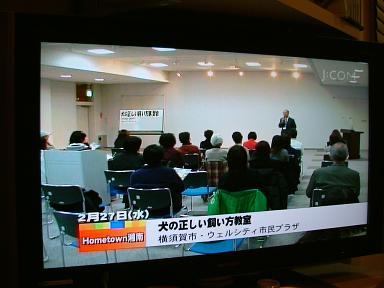 DSCF7199-TV.jpg
