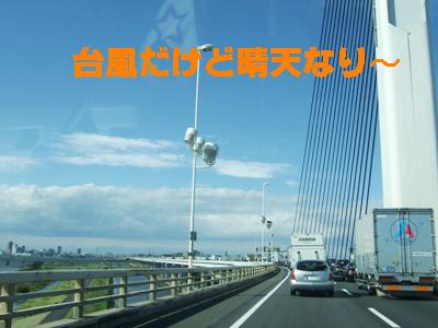 2009_10080002.jpg