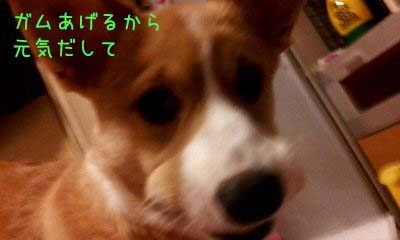 2012_02_20_18_00_45 (1)