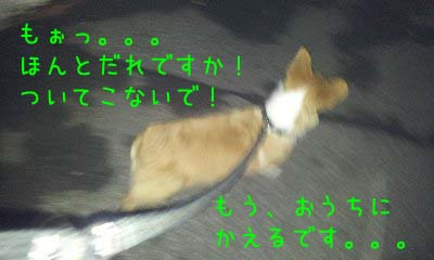 CameraZOOM-20120306195741143 (1)