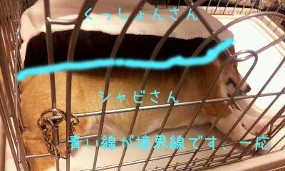 2012_02_07_14_02_21.jpg