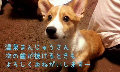 2012_02_08_21_10_36.jpg