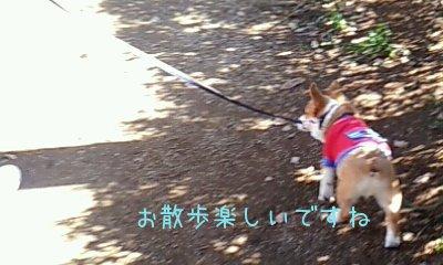 2012_02_12_10_14_14.jpg