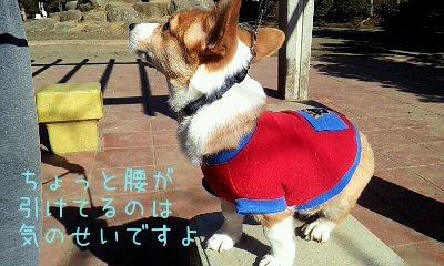 2012_02_12_10_17_52.jpg