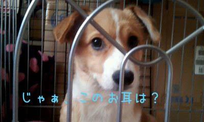 2012_02_13_15_32_21.jpg