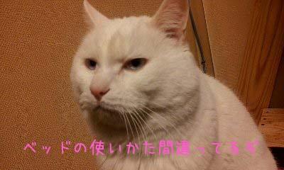 2012_02_13_18_54_25.jpg