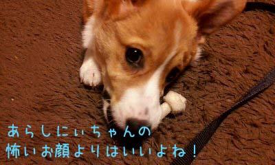 2012_02_13_18_55_04.jpg