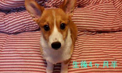 2012_02_15_09_59_53.jpg