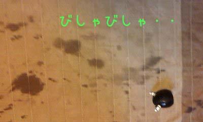 2012_02_16_13_06_22.jpg